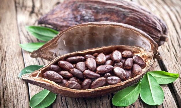 A comer cacao para vivir mejor