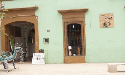Mercado orgánico en Oaxaca