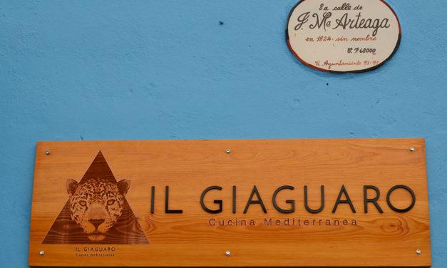 Il Giaguaro