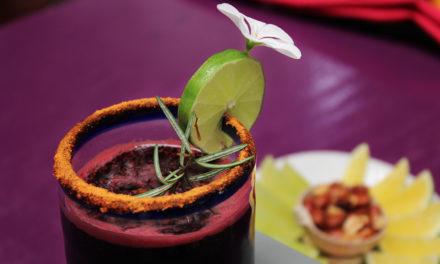 Mezcalín de jamaica con chapulines en Casa Coyotepec