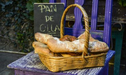 Pan de Olla | Panadería Evolutiva
