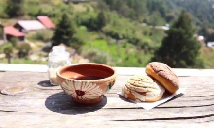 Rayito del Sol, comida para vivir en armonía
