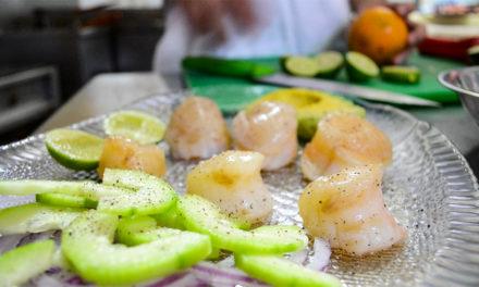 Callo margarita, un manjar marino de Oaxaca para el mundo