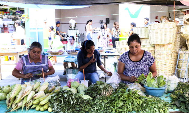 México desprecia especies nutritivas, advierte especialista