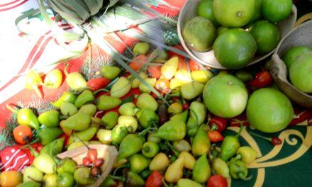 Productos saludables en el mercado orgánico de Huatulco