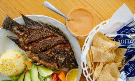 Montana | El restaurante mar y tierra con la mejor vista de Oaxaca