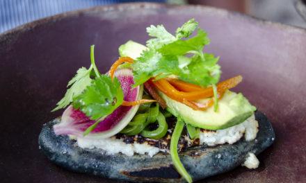 La exquisita cocina indígena en un concepto actual: Teocintle