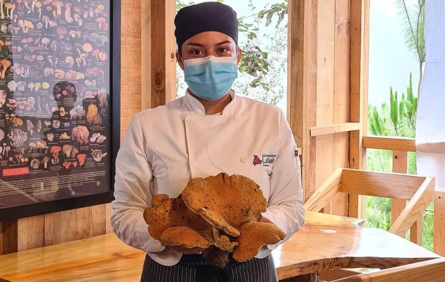 Hongos, un sabor que enaltece la gastronomía en Oaxaca